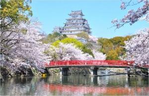 姫路城の入場料