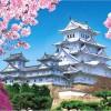 【姫路城】桜2017の見頃や混雑状況について