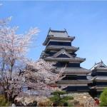 【松本城】桜2017の見ごろはいつ?駐車場情報も必見!