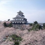 【長浜城】桜2017のライトアップの時間や見ごろはいつ?
