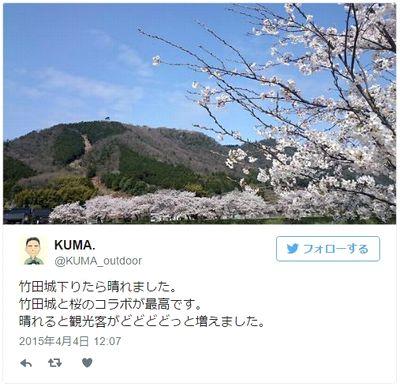 竹田城の桜