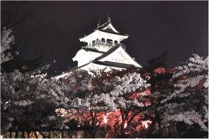 長浜城のライトアップ