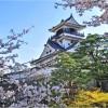 【高知城】桜2017の開花状況やライトアップについて