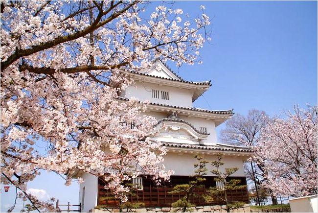 丸亀城の桜2017