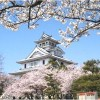 【長浜城】桜2017の見頃や開花予想について