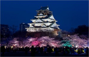 夜桜イルミナージュの時間