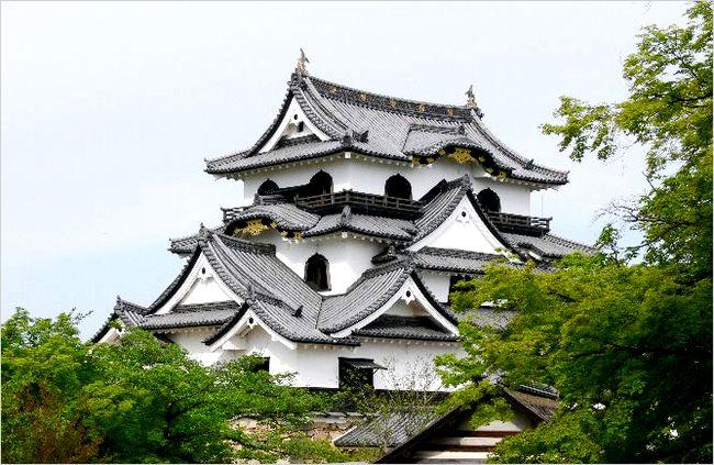 彦根城の観光