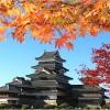 松本城の紅葉のライトアップや見頃について!駐車場は無料?