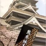 熊本城が復興城主の申し込みを受付中!ネットでも支援を呼びかけ