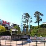 金沢城リレーマラソン2017のコースや交通規制は?「秋の陣」も開催!!